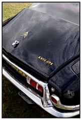 citroen ds (Christ.Forest) Tags: black nikon automobile noir 21 citroen ds voiture collection 27 chevron berline pallas manifestations neubourg sphère boîtemanuelle 4rapport boîtemécanique
