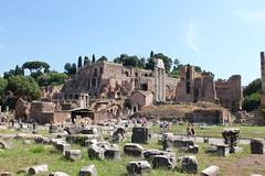 IMG_4151 (Jackie Germana) Tags: italy rome colosseum trevifountain romanforum spanishsteps