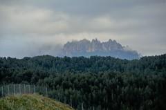 Montserrat (MARIA ROSA FERRE) Tags: montserrat