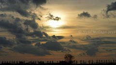Paysage : Taken while walking back to Schiphol P30 to take the bus to Airport Plaza after a day of spotting @ Alsmeerderweg 26-12-2015 (Nabil Molinari Photography) Tags: plaza bus walking back airport day taken os take after while paysage schiphol spotting p30 26122015 alsmeerderweg