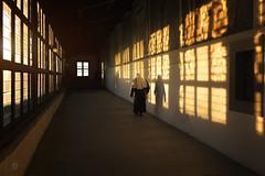 Fratello Sole (masowar (often off, sorry!!)) Tags: windows light sunset italy colors saint gold golden italia sister nun tuscany toscana suora italie verna santuario santuariodellaverna
