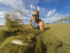 Frisbee (marc.stokes) Tags: life california ca usa beach coast sand surf day guard frisbee oakley baywatch optics revant