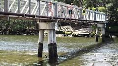 MSD_20160207_2072131 (DawMatt) Tags: birthday bridge family people smart architecture river personal events sydney australia diving nsw thomassmart