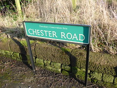 Chester Road, Daresbury - road sign (ell brown) Tags: greatbritain trees england tree sign village cheshire unitedkingdom roadsign daresbury halton chesterrd daresburyvillage daresburyconservationarea chesterrddaresbury