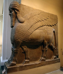 British Museum, human-headed winged bull (AnthonyR2010) Tags: sculpture london museum bull bloomsbury britishmuseum assyria sargonii khorsabad