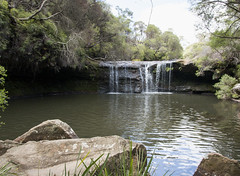 Nellies Glen, Jamberoo, Kangaroo Valley, Budderoo National Park, NSW (Jim 03) Tags: park spectacular waterfall december jim falls national kangaroo valley gorge 50 carrington 2015 budderoo metres jamberoo jimhoffman jhoffman jim03 wwwflickrcomphotosjhoffman2013 wwwjimahoffmancom