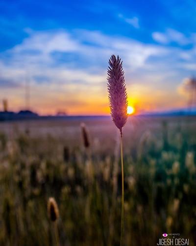 #sunrise_sunsets_aroundworld #MementoPhotography #jigesh #greatoceanroad