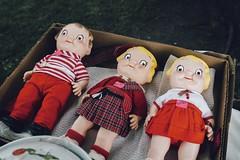Bright-Eyed and Bushy Tailed (davelawrence8) Tags: red summer usa mi weird dolls michigan yardsale smalltown 2015 jonesville canoneosm us12yardsale