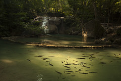 Fish and Waterfall (SedatPhotography) Tags: fish landscape waterfall extra ordinary