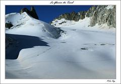 Le Glacier du Tacul. (P.LeToq) Tags: nature montagne alpes neige chamonix alpinisme randone