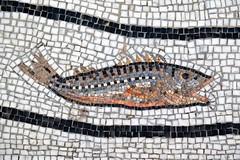A tiny fish - mosaic in Positano (ganagafoto) Tags: italy fish travels europa europe italia campania mosaic mosaico positano various viaggi varie pesce ganagafoto