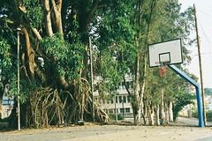 Peace (trsiro) Tags: tree film playground analog 35mm fuji basket olympus vietnam om1 olympusom1 fujic200