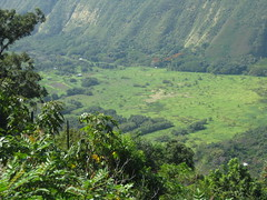 Waipi'o Valley, Hawaii (Kummerle) Tags: hawaii valley waipio kummerle