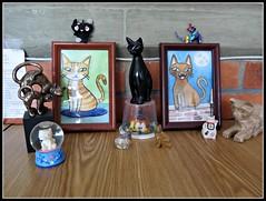 Los gatos de mi oficina (MaPeV) Tags: cats canon chats chat tabby kitty gatos powershot gato kawaii neko katze gatti felin gattoni gattini g16 tabbyspoted