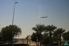 Abu Dhabi Februar 2016  6 (Fruehlingsstern) Tags: abudhabi marinamall ferrariworld canoneos750 scheichzayidmoschee
