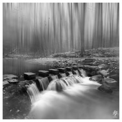 A Forest... (fearghal breathnach) Tags: longexposure trees bw abstract blur water monochrome forest river blackwhite surreal motionblur steppingstones tollymore tollymoreforest 52weeksof2016