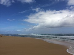 2016-03-20 11.14.36 (Melita S.A.) Tags: ocean beach kauai hanalei
