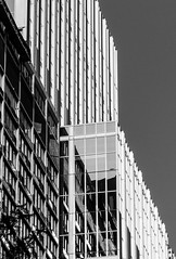 Reflection, P1030196-Edit (nianci pan) Tags: chicago abstract building geometric illinois pattern geometry sony line pan sonyalphadslr nianci sonyphotograpging