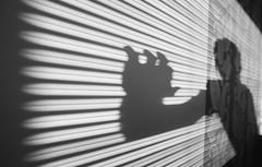 Pull Down the Shades (marcin baran) Tags: shadow bw black window monochrome lines wall person mono blackwhite fuji hand poland polska shades figure shutter fujifilm leading gliwice x100 fujix100 marcinbaran x100t