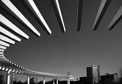 L1002270-Edit (John F. Roberts) Tags: leica bw white black architecture 28mm 14 m summilux asph