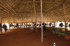 Interior of Meeting Hall, Embera Indians, Jungles of Panama (Joseph Hollick) Tags: jungle panama embera emberaindians