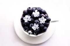 320 (Rafi Moreno) Tags: flowers cup canon vintage spring hipster pale retro taza blueberries rafi clavealta fondoblanco arandanos 365proyect lienzoblanco proyecto365fotos