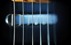 Telecaster Lipstick Pickup (K. McMahon) Tags: chicago closeup illinois guitar guard pickup fender instrument string strings lipstick pick six fret telecaster fretboard transducer pickguard resissue