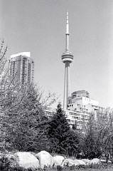CN Tower From the Music Garden (Bill Smith1) Tags: toronto nikonf3hp hc110b berggerbrf400 nikkorai50f14lens filmshooterscollective spring2016 heyfsc billsmithsphotography
