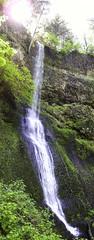 Silver Falls 009 Vertical Pano