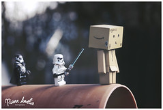 IMG_3608wm (riann.evans) Tags: stilllife macro canon fun toys starwars lego creative story lightsaber smallworld danbo danboard