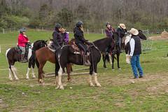 DSCF0299.jpg (Ed Traywick) Tags: horses horse leo robyn obstacles horseclinic