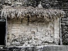 "Tikal: stèle de l'Acropole Nord <a style=""margin-left:10px; font-size:0.8em;"" href=""http://www.flickr.com/photos/127723101@N04/26237746205/"" target=""_blank"">@flickr</a>"