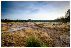 Sonse Heide, Nederland (hypnotixed.com) Tags: winter groen natuur wolken heide landschap bossen staatsbosbeheer stuifzand sonsebossen langeven