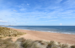 Beach and sea from the dunes (DavidWF2009) Tags: sea beach dunes northumberland seatonsluice