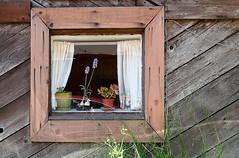 San Anselmo Window (Stephen Sarhad) Tags: ca usa marin marincounty sananselmo