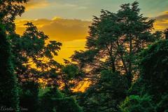 #sunset In #longisland  #Afterglow  #NewYork (lelobnu) Tags: sunset newyork longisland afterglow