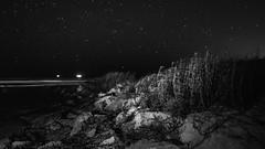 Shrimping by Starlight (dans eye) Tags: beach stars star rocks flickr florida fl starrynights flaglercounty flaglerrivertoseapreserve starstudies