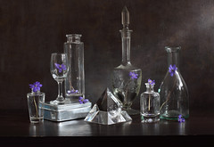 Purple Solitude (panga_ua) Tags: flowers blue stilllife art glass composition canon reflections spectacular artwork solitude darkness purple bottles artistic availablelight ukraine poetic creation transparency imagination natalie wildflowers presentation arrangement loner waterbottle tabletop carafe springtime decanter refractions bodegon naturemorte panga glassware artisticphotography rivne naturamorta artphotography sharpfocus playoflight squarebottle crystalpyramid silverbox paintedbackground liverleafs cutglassdecanter woodentabletop  nataliepanga purplesolitude