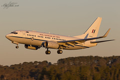 RAAF Boeing B737 BBJ A36-002 (Col Turner) Tags: golden airport jet business hour nsw canberra boeing b737 bbj raay yscb a37002