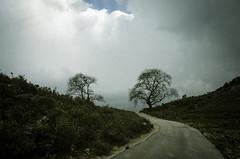 no limit (partis90) Tags: color lens landscape photography gr farbe ricoh 18mm