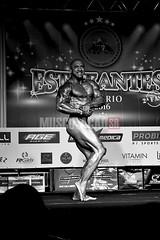 DSC_5981 (Revista virtual de musculao.) Tags: campeonato wellness culturismo ifbb musculao bodyfitness fisiculturismo bodubuilding ifbbrio bodushape musculacaosr