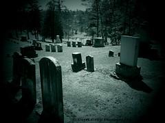 Woodlawn Cemetery (Gerri Gray Photography) Tags: newyork cemetery grave graveyard death memorial gravestone mementomori syracuse tombstones woodlawn gravemarker taphophilia