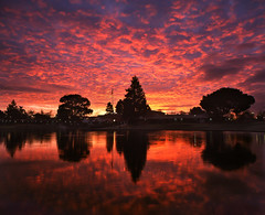 Sunnyvale Sizzle (MattyD90) Tags: california morning light sky color reflection film water clouds sunrise buildings mediumformat dawn geese sunnyvale pond flag ducks communitycenter