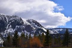 DSC_0685_1291 (Derek Shore) Tags: sky mountain snow tree beautiful wow cool hill d330 nikond3300