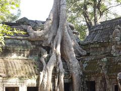 DSCN2294 (albyantoniazzi) Tags: voyage travel architecture cambodia angkorwat temples siemreap archeology kampuchea cambogia