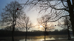 Sonnenaufgang am Hegbachsee (mushuku) Tags: landscape see natur nauheim hegbachsee dodwood 52weekchallenge dogwood52