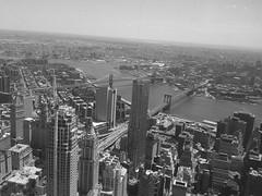 Manhattan (nickbruce483) Tags: nyc downtown manhattan brooklynbridge manhattanbridge skycraper freedomtower oneworldtradecenter oneworldobservatory