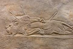 DSCF7009.jpg (Darren and Brad) Tags: england london thebritishmuseum assyria assyrian sportofkings ashurbanipal lionhunting royallionhunts
