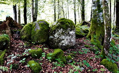 Twin Rocks (winkler.roger) Tags: landscape austria mellau vorarlberg bregenzerwald mellental