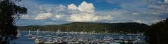 Panorama of Pittwater (Aviator195) Tags: sea panorama cloud seascape detail clouds sailboat landscape photography boat photo cool interesting nikon sailing wind sydney clarity australia clear photograph cumulus boating sail resolution woah detailed pittwater churchpoint ptgui photostitching cumuluscloud d7100 northerbeaches nikond7100 truepanorama